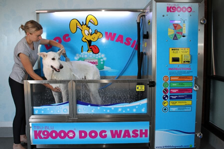 K9000 self serve dog wash opportunity costs fees for 2018 k9000 self serve dog wash solutioingenieria Image collections
