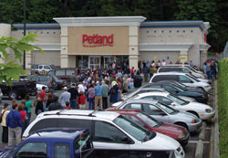 Busy store