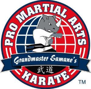 Pro Martial Arts 01