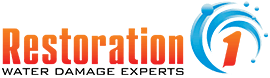 Restoration 1, Cleaning & Maintenance Franchise