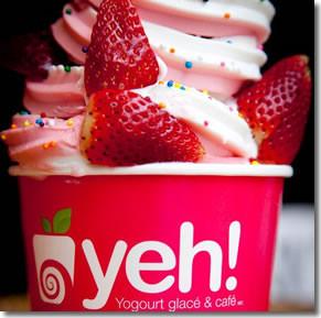 Yeh Yogurt 01