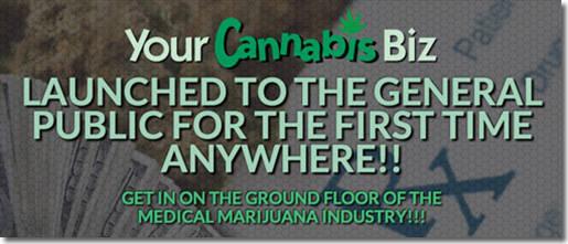 Your Cannabis Biz Banner