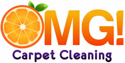OMG! Carpet Cleaning Franchise Opportunity