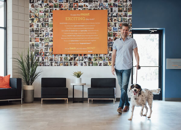 Dogtopia Dog Daycare Franchise Costs & Fees for 2019